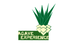 agave exper