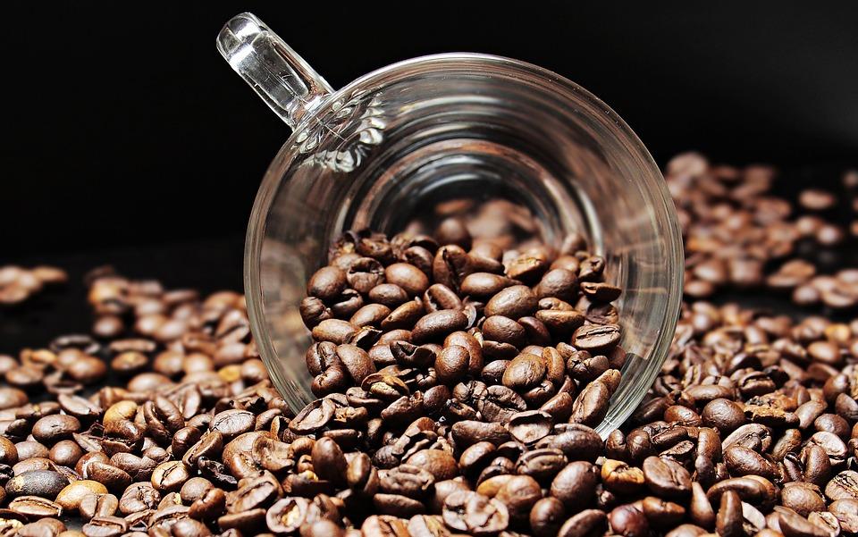 masterclass corso di caffetteria professionale